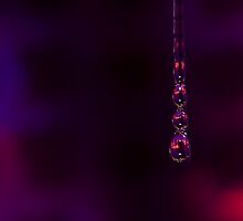 Bejewelled water  by Tamarama72