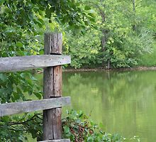 Fence by the Water by purplesweet