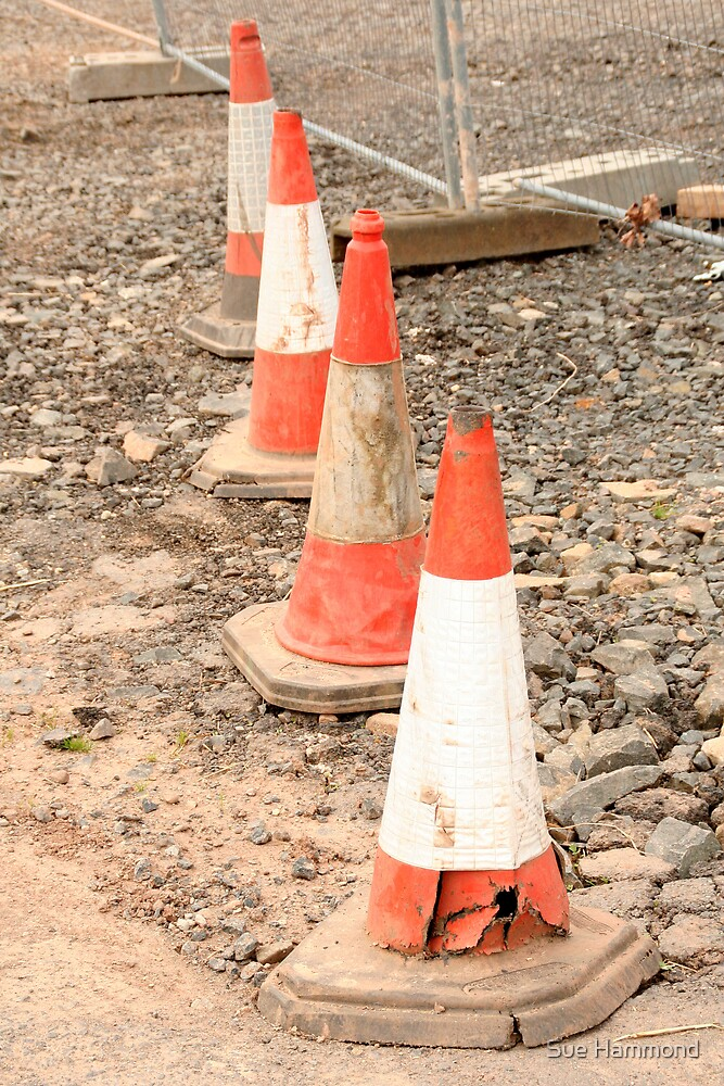 Traffic cones by Sue Hammond