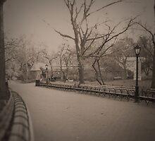 A Lonely Walk by Cinthia Creel