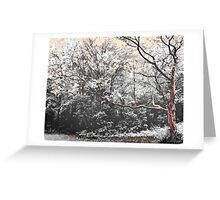 Forest Whispers Greeting Card