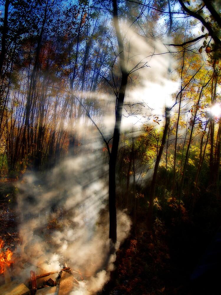 The Burn Pile by NYLongBow