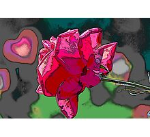 roses in the garden Photographic Print