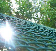 Fence by ins0mniac