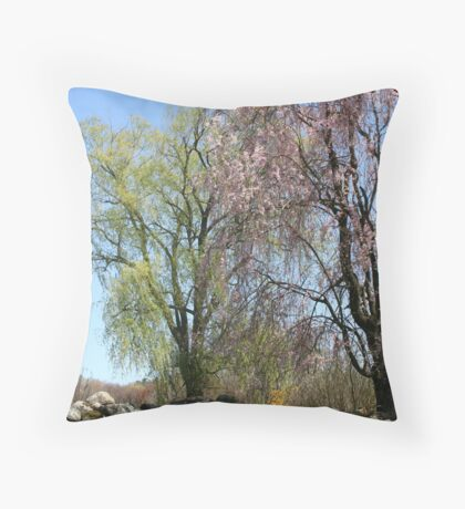 Spring Time Afternoon Throw Pillow
