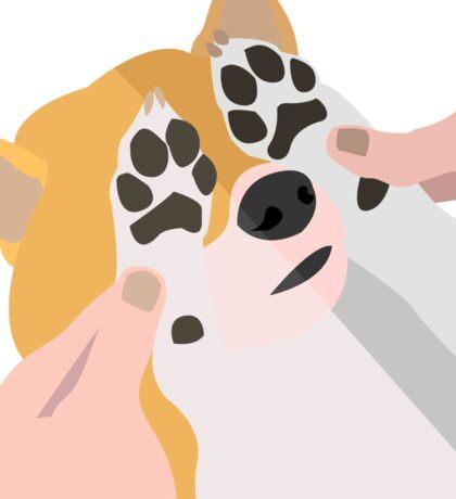 Shy Shiba Inu   Vector Art Sticker