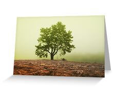 The tree in fog Greeting Card