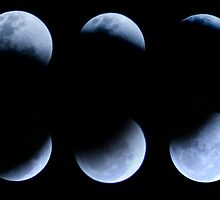 Lunar Eclipse in Stages by richocam