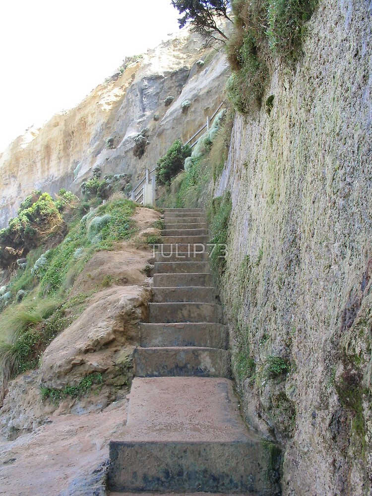 GIBSON STEPS by TULIP73