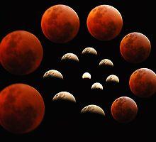 Lunar Spiral by Rebecca McLean