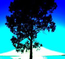 Blue Sunrise on Lake Mulwala ! by Michael Eyssens