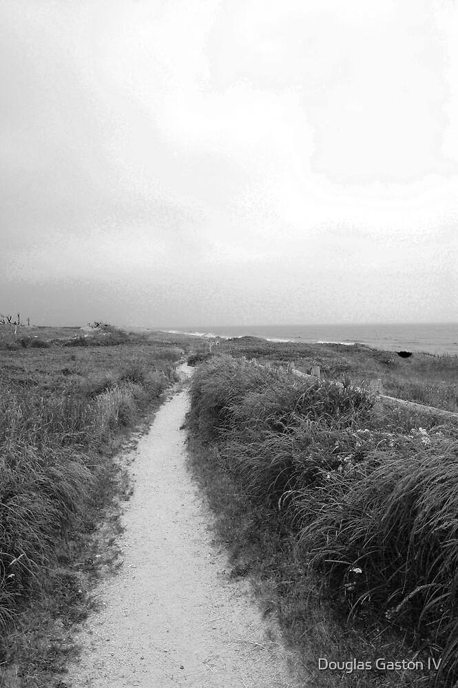 Aquinnah Beach Path by Douglas Gaston IV