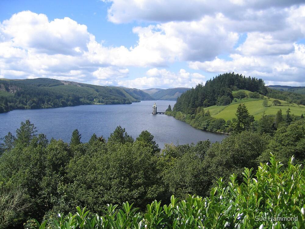 Lake Vernwy by Sue Hammond