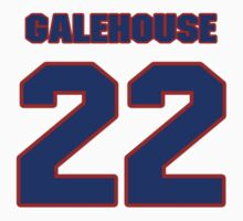 National baseball player Denny Galehouse jersey 22 by imsport