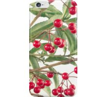 Christmas Berry iPhone Case/Skin