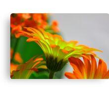 Light Bulb Flower Canvas Print