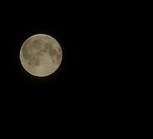 full moon by kobak
