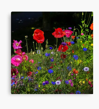 Spring To Keep Canvas Print