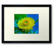 Fuzzy Yellow Framed Print