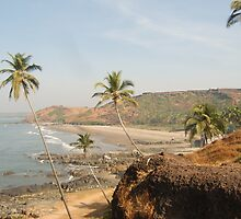 Goan Paradise by dbartle