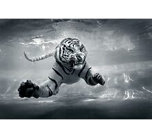 Underwater Danger Photographic Print