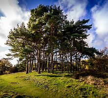 Clent Hills Blue Sky by StephenRphoto