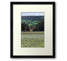 Swan Valley Winery Framed Print