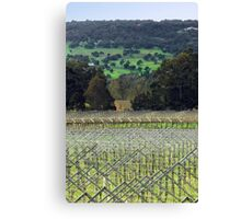 Swan Valley Winery Canvas Print