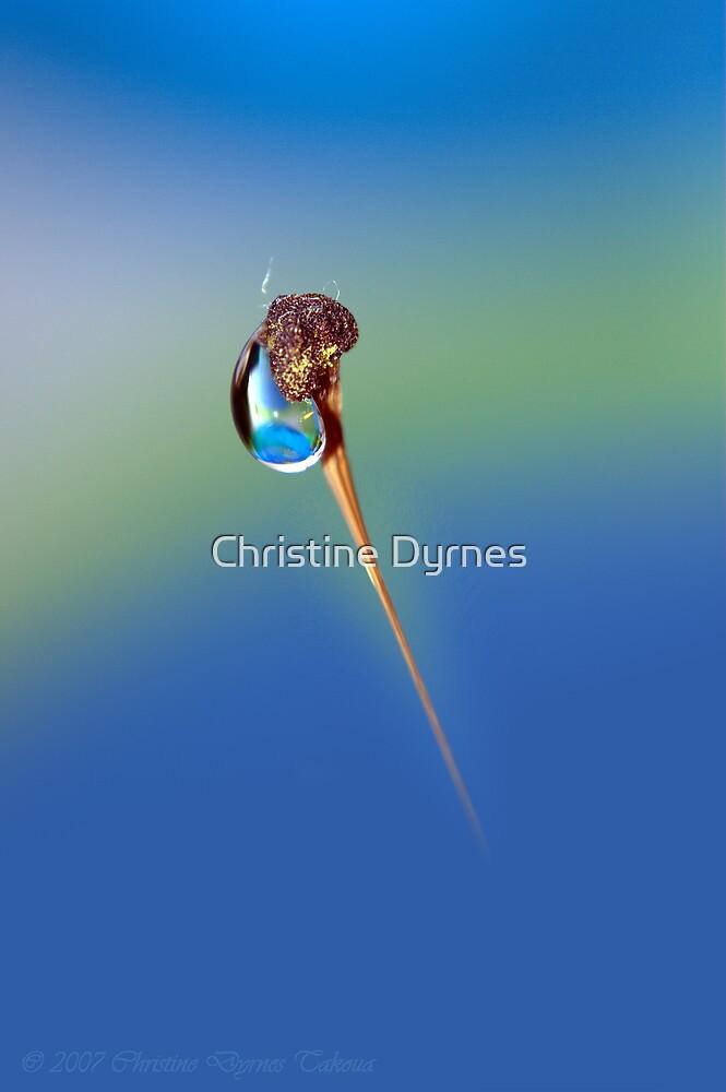 Untitled by Christine Dyrnes