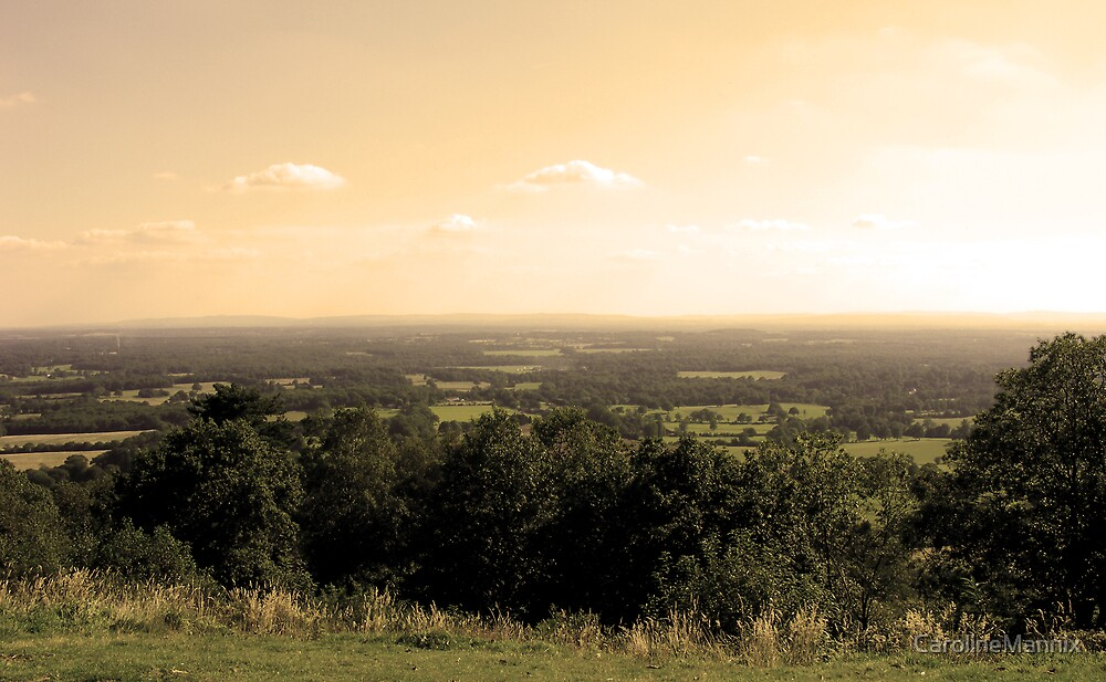 Sunny Sussex by CarolineMannix