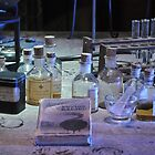 Advanced Potion Making by May92