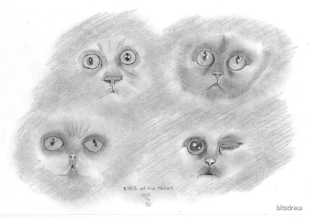 the eyes by bitsdraw