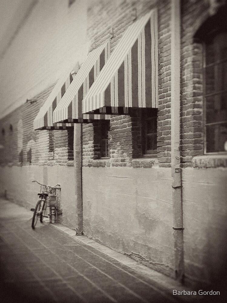 Bike Parking by Barbara Gordon