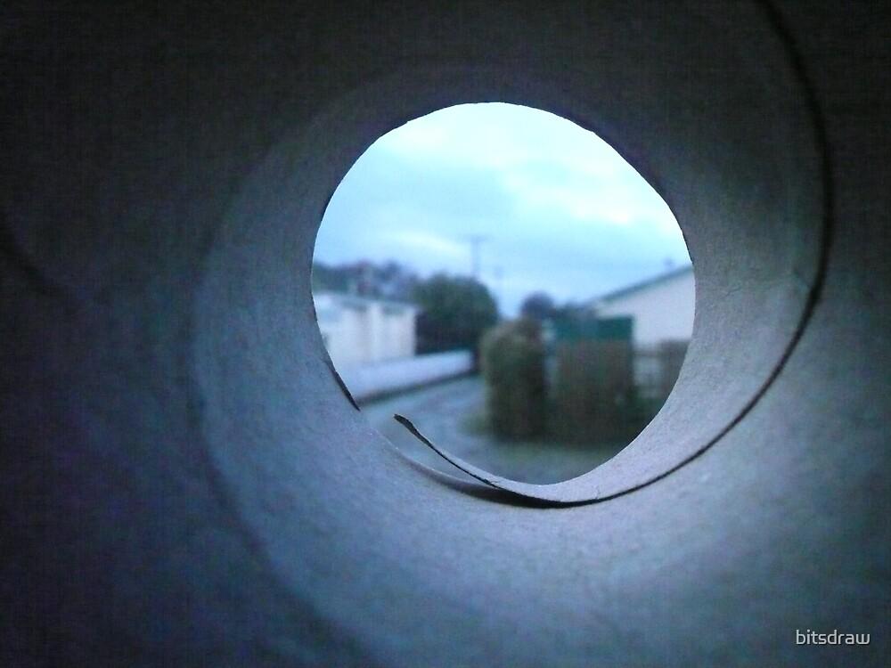 inside paper roll by bitsdraw
