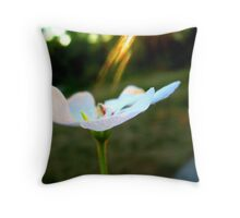 Lighting on Flower Throw Pillow