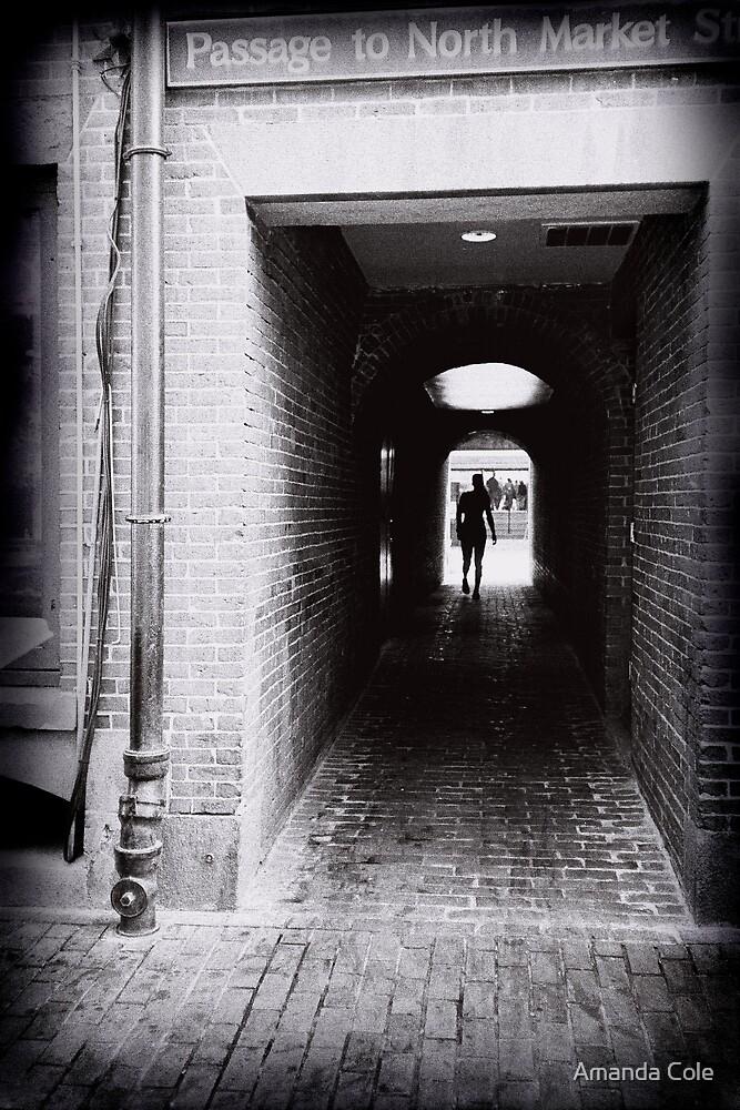 Walkway by Amanda Cole