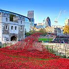 The Wave Tower of London Poppies by Colin J Williams Photography