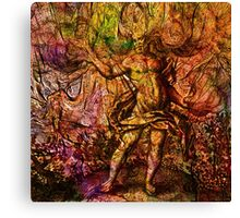 Alchemical Fire - In The Belly Of The Wind Canvas Print