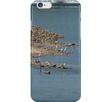 Herons Below The Dam iPhone Case/Skin