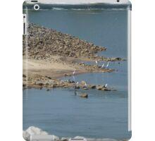 Herons Below The Dam iPad Case/Skin