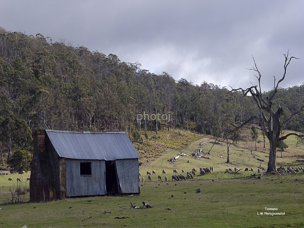 photoj Australia - Tasmania Outback Homestead by photoj