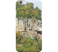 God's Beauty Is Everywhere iPhone Case/Skin