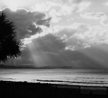 Surfers from Snapper by Lachlan Kent