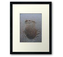 Beach Journey Framed Print