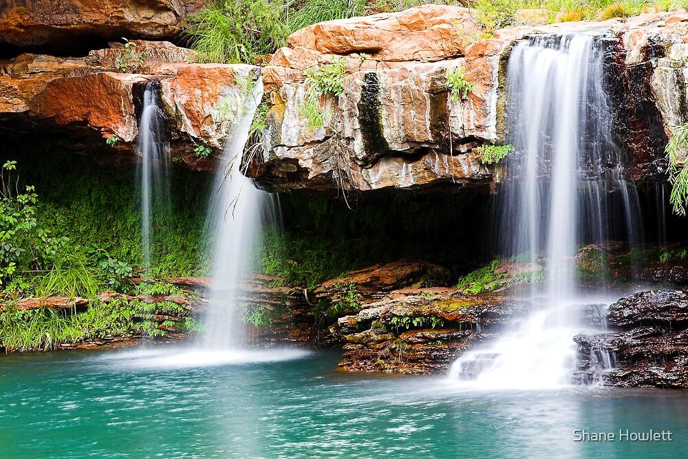 Fern Pool Falls by Shane Howlett