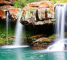 Fern Pool Falls by Shane Howlett