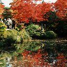 Japanese Garden by Joumana Medlej