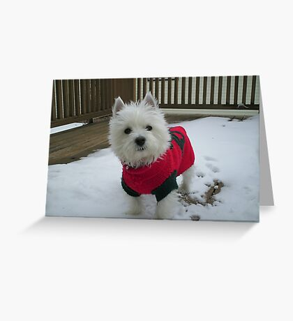 Winnie in the Snow Greeting Card
