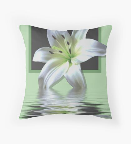 framed Lilly Throw Pillow