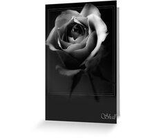 Rose in Mono 2 Greeting Card